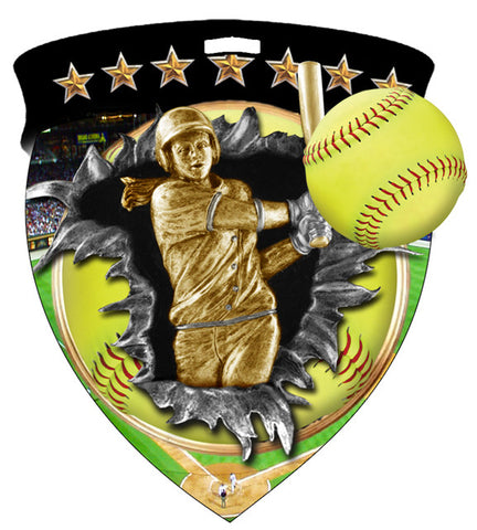 Color Shield Medallion Softball