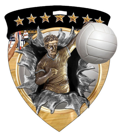 Color Shield Medallion Volleyball Male