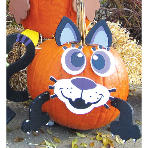 Halloween Costume for Your Pumpkin-Cat - Chinaberry Books, Toys & Treasures