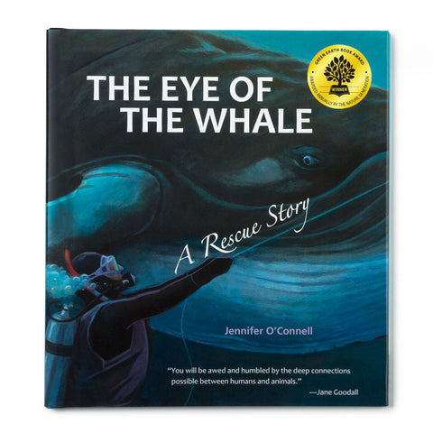 The Eye of the Whale - Chinaberry Books, Toys & Treasures - 1