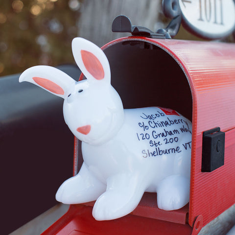 """Animails"" Mailable Animals - Chinaberry Books, Toys & Treasures - hare"