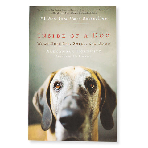 Inside of a Dog - Chinaberry Books, Toys & Treasures - 1