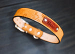 Leather Dog Collar, Bee and Honeycomb