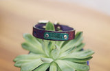 "Personalized Leather Dog Collar, 5/8"" Branches"