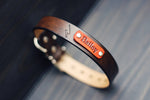 "Personalized Leather Dog Collar, 1"" Lightning"
