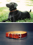 Personalized Leather Dog Collar, Palm Leaves pattern