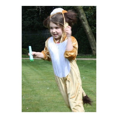Lion Childrens Animal costume 3-5 years - Kiddymania Rag Dolls