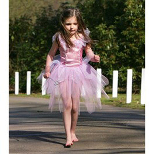 Blossom Fairy Dressing Up outfit Fancy Dress