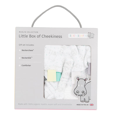 Hippo Little Box of Cheekiness - Kiddymania Rag Dolls