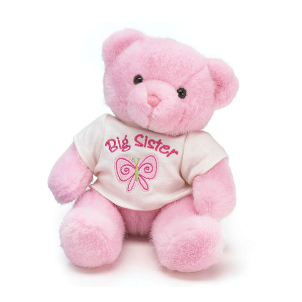 Big Sister Gift Pink Teddy Bear! Wonderful Sibling Gift!
