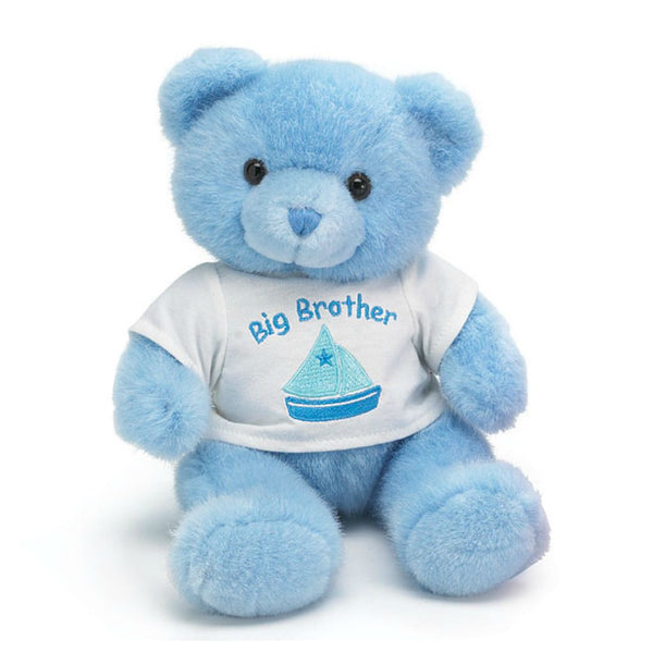 Big Brother Teddy Bear. Great Sibling Gift!