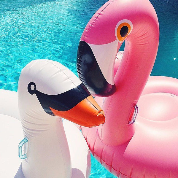 Amazing Giant Inflatable Flamingo/Swan Pool Float Ride-On