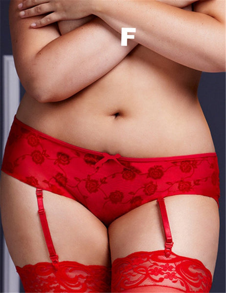Bow and Lace Garter Panties