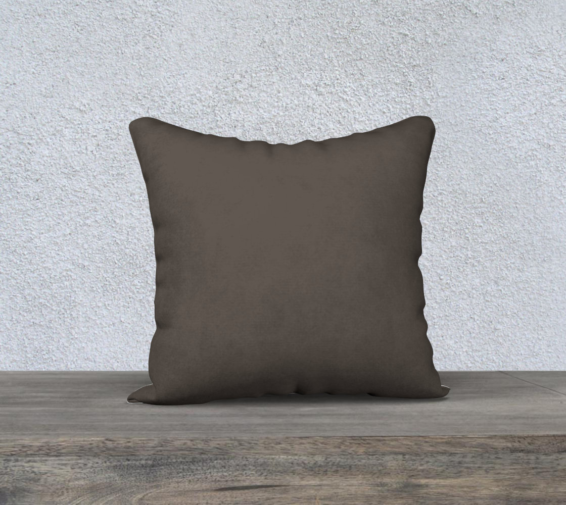 "AK02-044-AB1:  Pillow 18""x18"" 