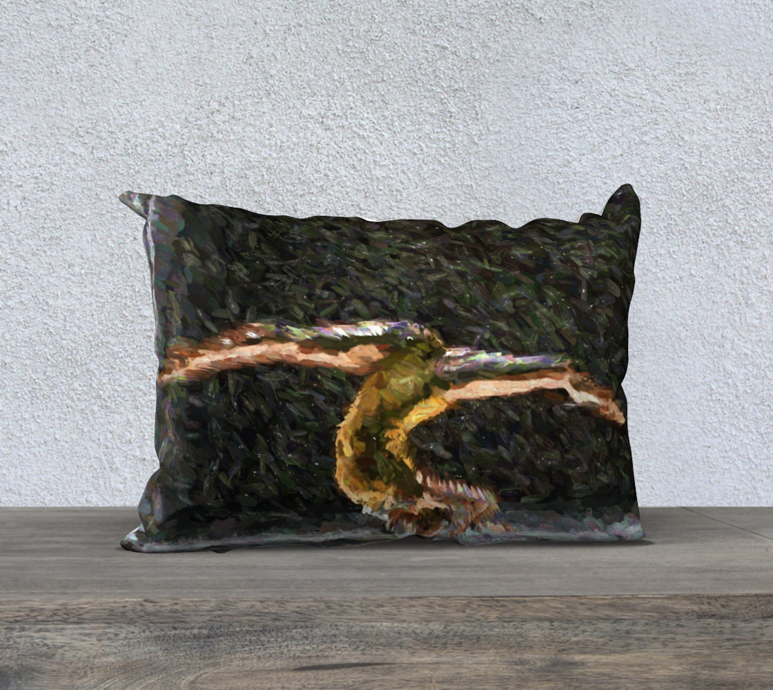 Test_Pillow-20x14