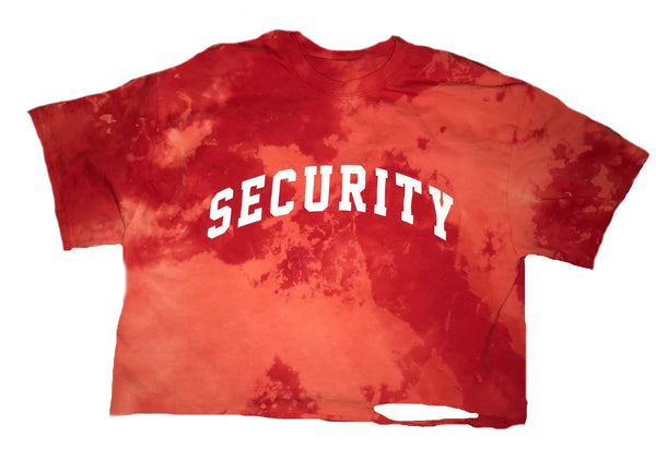Security Vintage Crop Tee