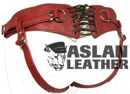 Aslan Leather Cherry Minx -  Harness - Spot of Delight - 3