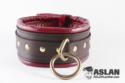 Aslan Leather Coach Padded Collar -  Collars - Spot of Delight - 1