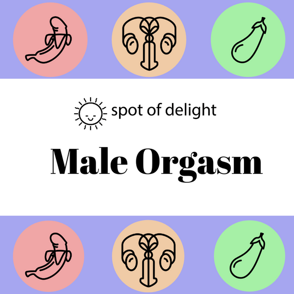 Male Orgasm Workshop