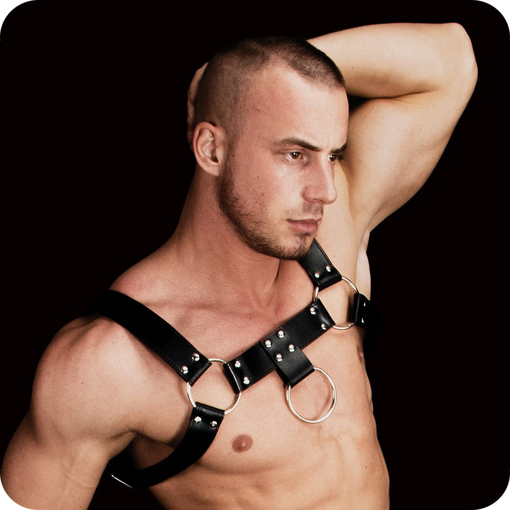 Costas #2 Upper Body Harness