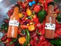 Make your own Hot Pepper Sauce for gifts