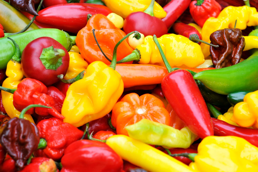 Bounty Mix Super Hot Peppers - Pepper Joe's