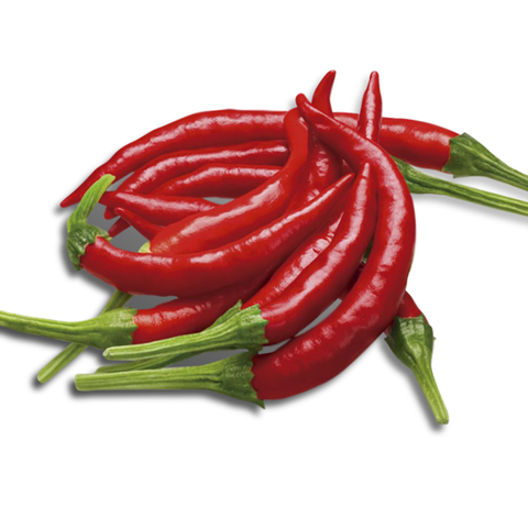 chile de arbol peppers