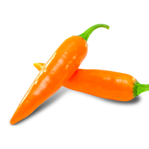 bulgarian carrot pepper scoville is very hot and not like the normal carrot we all know!