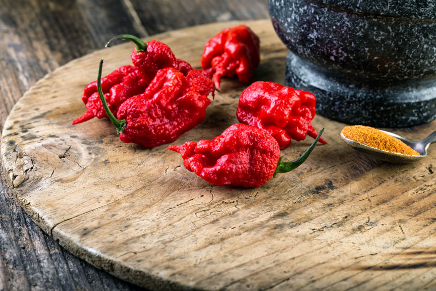 Carolina Reaper - World's Hottest Pepper - Pepper Joe's