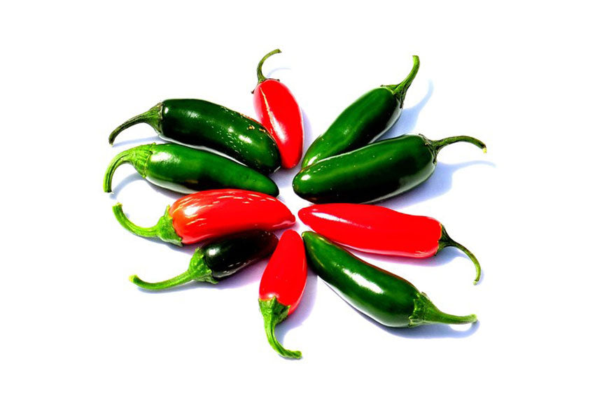 Jalapeno Hot Peppers Variety - Pepper Joe's