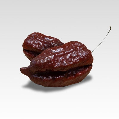 Bhutlah Bubblegum 7 Pot Chocolate Seeds