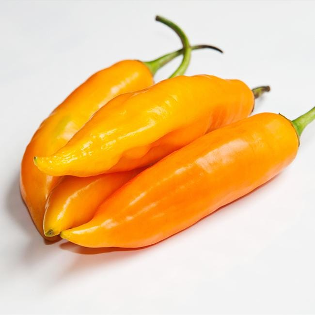 Aji Amarillo Pepper Seeds