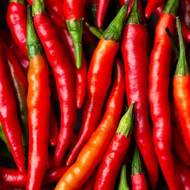Cayenne Pepper 6-Pack Seeds