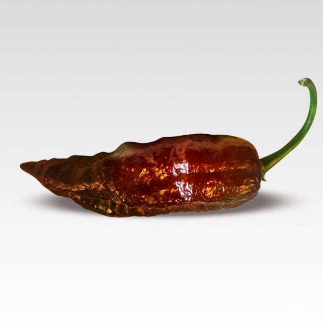 Chocolate Fatali pepper seeds