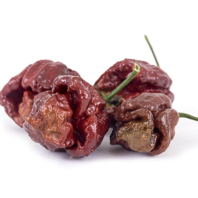 Chocolate Moruga Brain Seeds