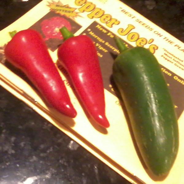 Jalapeno 3-Pack - Early Jalapeno, Giant Jalapeno, Black Jalapeno - Hot Pepper - Pepper Joe's