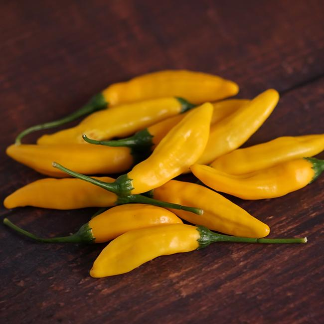 Yellow Lemon Drop Pepper aka Hot Lemon Seeds