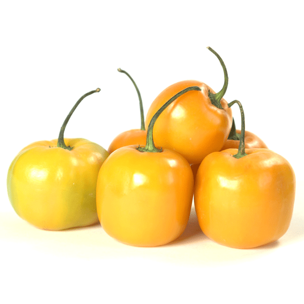 yellow manzano pepper