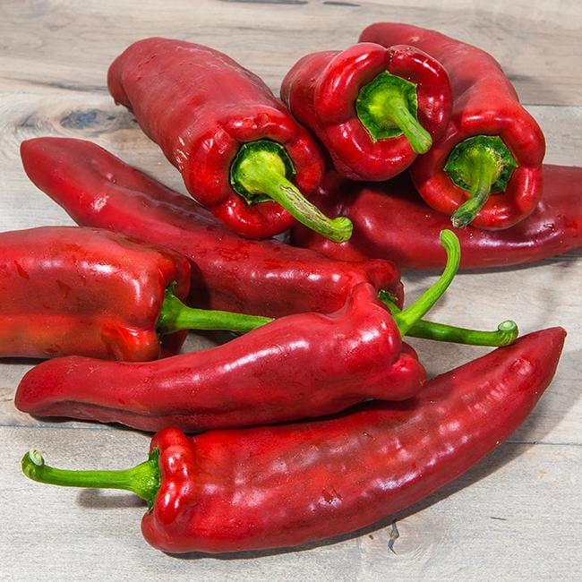 Marconi Italian Red Pepper Seeds