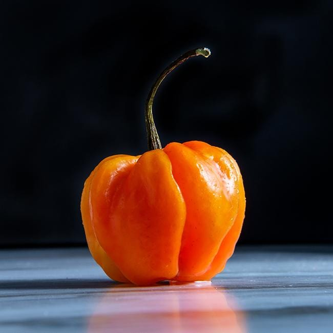 Orange Scotch Bonnet Pepper seeds