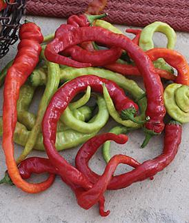 Ristra Cayenne Pepper Seeds