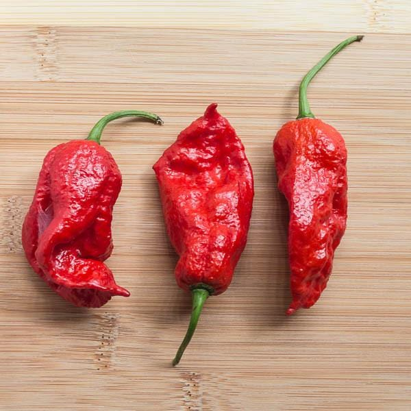 King Naga Pepper Seeds from Pepper Joe's