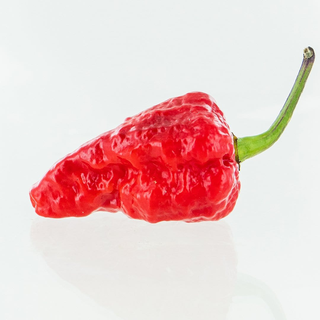 Red Naga Brain Pepper Seeds