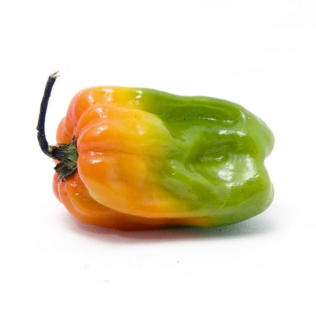 Scotch Bonnet Rainbow Seeds Collection