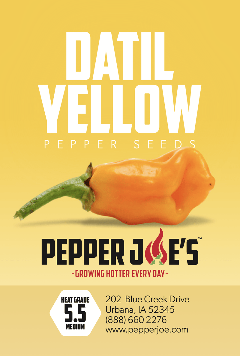 Datil Hot Pepper - Pepper Joe's