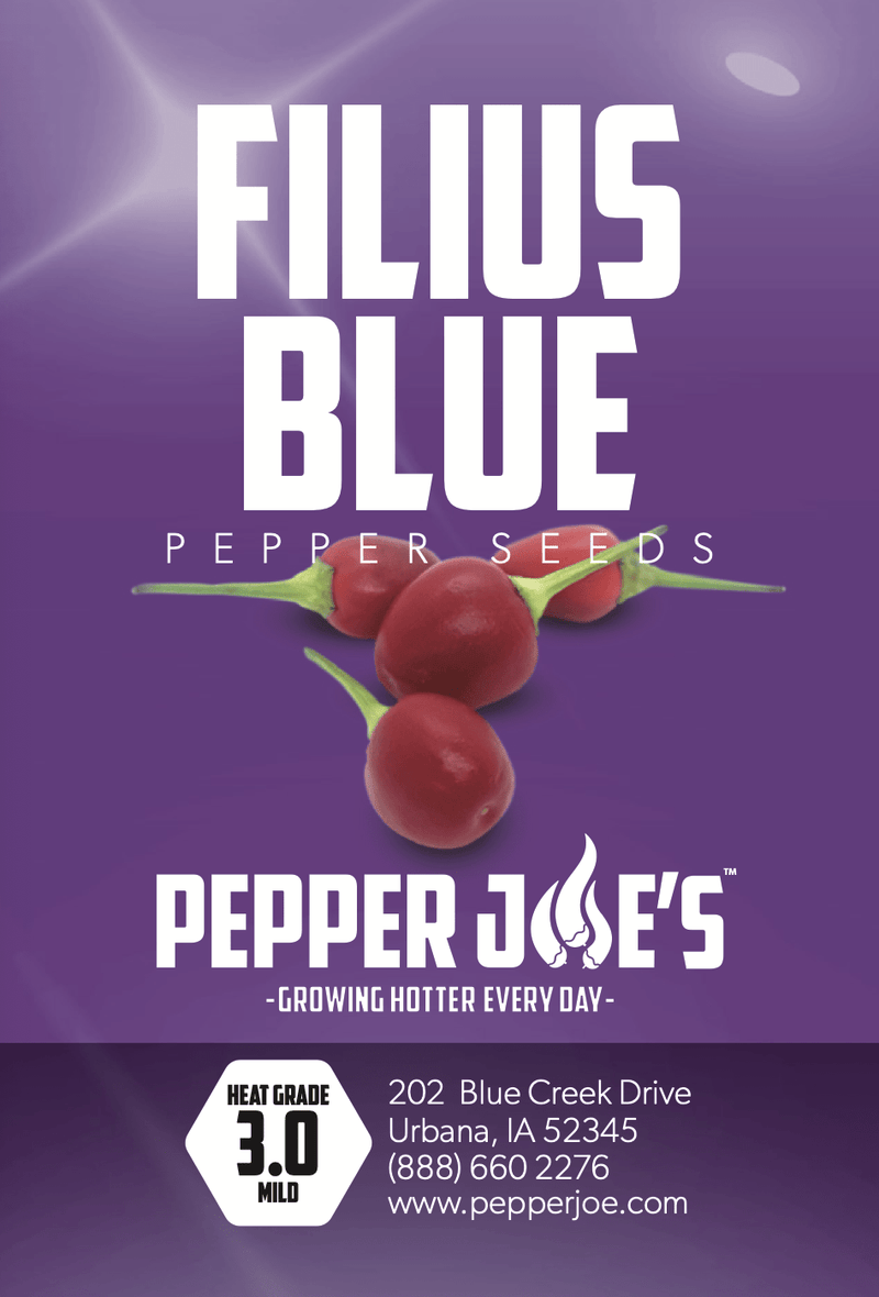 Filius Blue Seeds