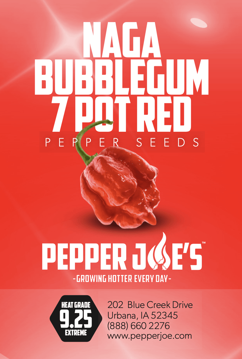 Naga Bubblegum 7 Pot Red | Pepper Joe's