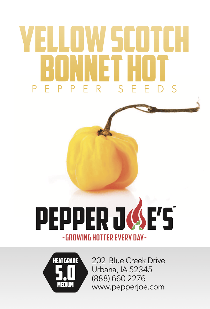 Yellow Scotch Bonnet - Hot Pepper - Pepper Joe's