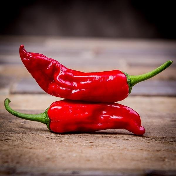 Red Italian Pepperoncini Ripe Peppers on wood