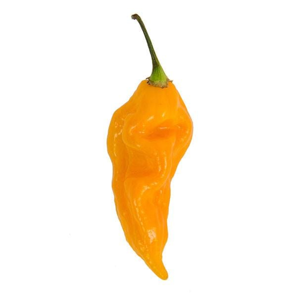 Yellow Fatali Hot Pepper - Pepper Joe's
